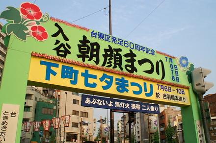 Asagao001