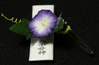 Asagao006
