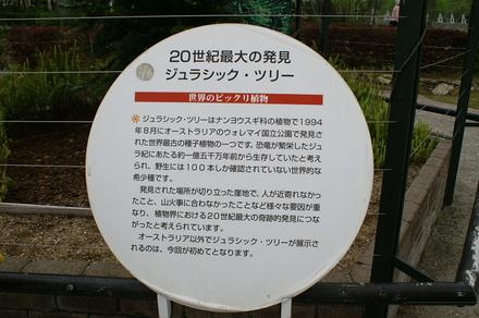 Hamanako009_2